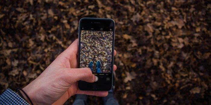 Ein Mann macht mit seinem Smartphone ein Bild von Laub