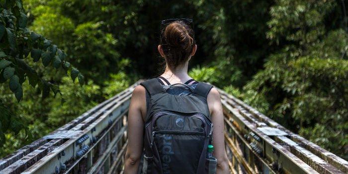 Eine Backpackerin geht über eine Brücke in einen grünen Wald